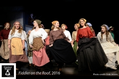 Fiddler-on-the-Roof_010