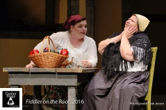 Fiddler-on-the-Roof_019