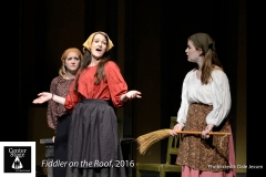 Fiddler-on-the-Roof_026