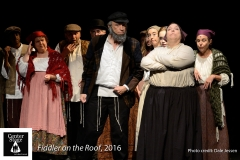 Fiddler-on-the-Roof_202