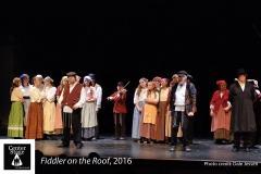 Fiddler-on-the-Roof_220