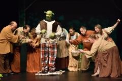 Shrek_028