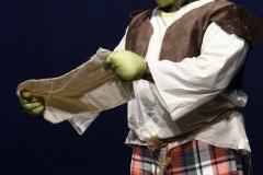 Shrek_080