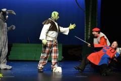 Shrek_086