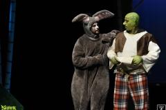 Shrek_091
