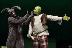 Shrek_092