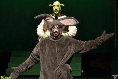 Shrek_093
