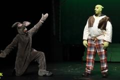 Shrek_098