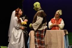Shrek_306
