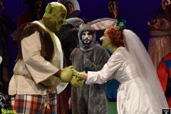 Shrek_348