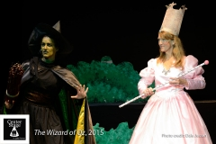The-Wizard-of-Oz-14