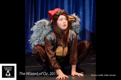 The-Wizard-of-Oz-41